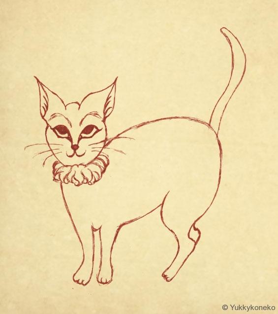 猫(習作)